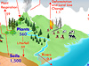 Global Carbon Cycle graphic