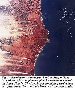 Savannah burning in Mozambique, view from space shuttle