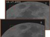 Simultaneous observations of the moon during a lunar impact
