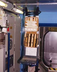 Photo description: The H-Strap of the Payload Equipment Restraint System (PERS) holds a variety of equipment. It attaches to the Space Station's rack seat track system — similar to seat tracks used in commercial airplanes.