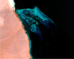This Landsat image, obtained from the Millennium Coral Reef Project image library, shows the Mirear Island reef complex on the coast of the Red Sea.