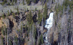 This is a photo of Undine Falls in Yellowstone National Park.