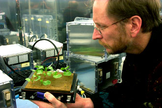 Dr. Gary Stutte, researcher at NASA's Space Life Sciences Lab, pictured with research radishes.