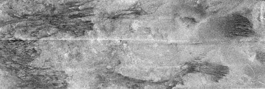 image is a portion of the swath acquired by the Cassini Titan radar mapper