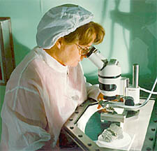 Marilyn Lindstrom studying a piece of meteorite