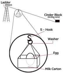 Set-up drawing for egg-testing experiment