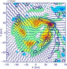 Vorticity, updraft velocities, and asymmetric flow vectors.