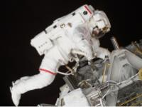 Astronaut Michael E. Lopez-Alegria, STS-113 mission specialist, works on the ISS.