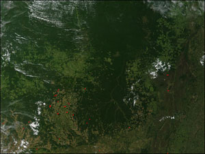 A MODIS image revealing the widespread deforestation, light green and brownish areas,  taking place near Mato Grosso, Brazil.