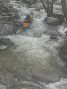 Tom Livermore whitewater open canoeing