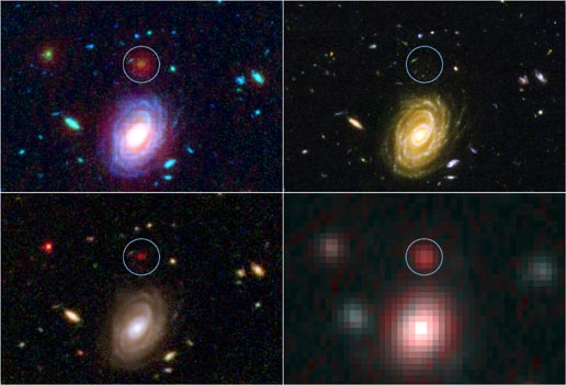 Spitzer and Hubble Space Telescopes image HUDF-JD2, one of the most distant galaxies ever seen. Top left, a combined visible and infrared view; top right, Hubble's visible ligh viwe; lower left, Hubble's infrared view; lower right, Spitzer's infrared view.