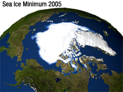The minimum concentration of Arctic sea ice in 2005