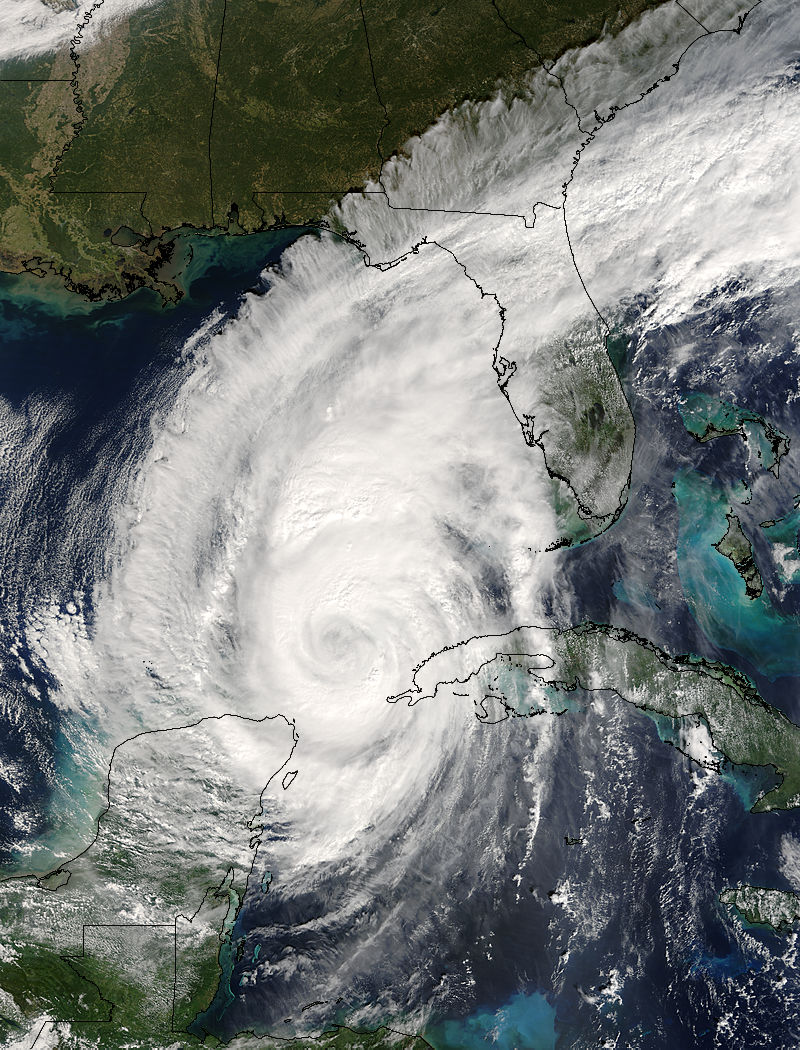 In Florida, after Hurricane Wilma 61