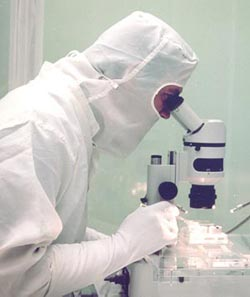 scientist working in JSC curation lab