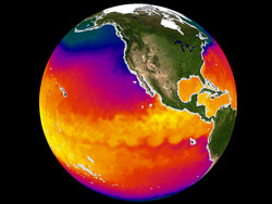 A screenshot showing sea surface temperature differences on a globe