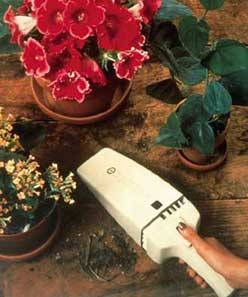 Dustbuster is used to clean up soil from potted plants.