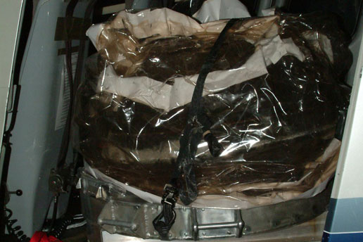 Stardust return capsule inside a protective covering