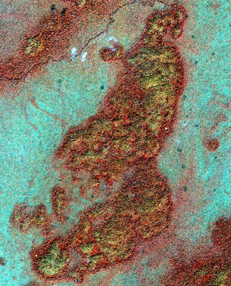 False-color IKONOS image of Guatemalan bajo