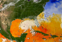 Image of Sea Surface Temperature from Hurricane Rita