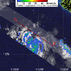 Image of Tropical Storm Daniel from TRMM