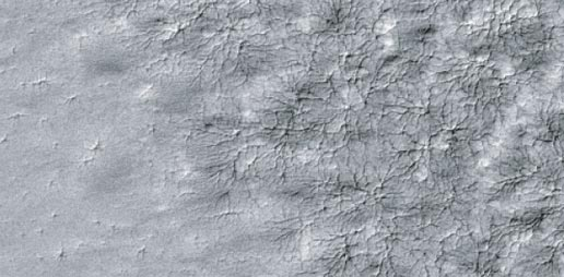 A delicate pattern, like that of a spider web, appears on top of the Mars residual polar cap.