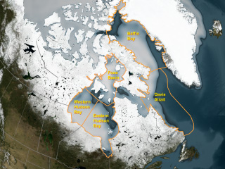 Image showing changes in sea ice that might be affecting polar bear populations in five regions.