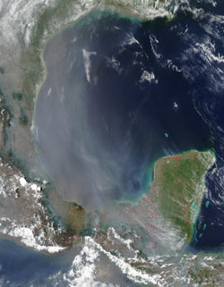 A thick haze of smoke covers much of the Gulf of Mexico and southern Texas in this true color MODIS image.