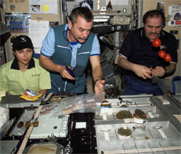 ISS013E82899 -- Station crew members share a meal