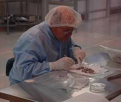 Don Burnett, Genesis principal investigator, examines samples upon their return in Utah