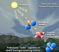 A diagram showing how sunlight affects nitrogen oxides and volatile organic compounds to create ground-level ozone