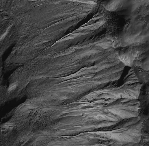 Mid-latitude gullies on a crater wall on Mars
