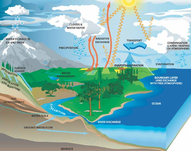 water cycle | Visualizing Science