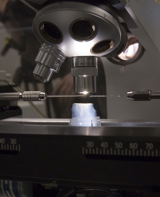 'needles' mounted on micro-manipulators