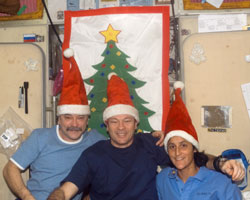 ISS014-E-10236 --- Mikhail Tyurin (left), Michael Lopez-Alegria and Sunita Williams pose for a holiday photo.