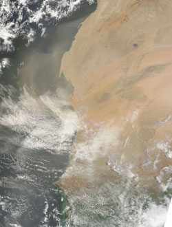 A plume of dust blew off the west coast of Western Sahara and Mauritania on July 23, 2006. New research suggests such dust outbreaks may inhibit hurricane formation.