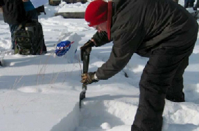 An educator wearing coat, hat and gloves digs in the snow