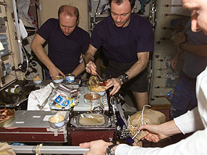 ISS014-E-20131 - The crew members onboard the ISS share a meal