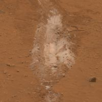 patch of bright-toned silica-rich soil