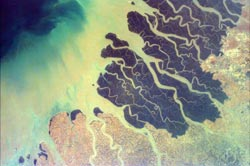 EarthKAM image of Ganges River Delta in Bangladesh and India