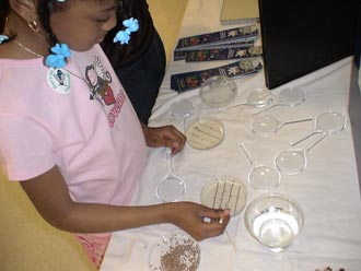 A student views seeds at the Sally Ride Science Festival at Meredith College in Raleigh, NC.