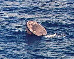 Image result for skylab 4 landing