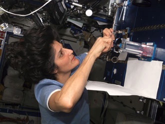 Photo of Sunita Williams doing experiment