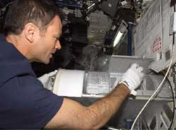 Astronaut Michael Lopez-Alegria inserts blood and urine samples into the Minus Eighty Degree Laboratory Freezer for ISS, or MELFI.