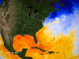 Image of current sea surface temperature