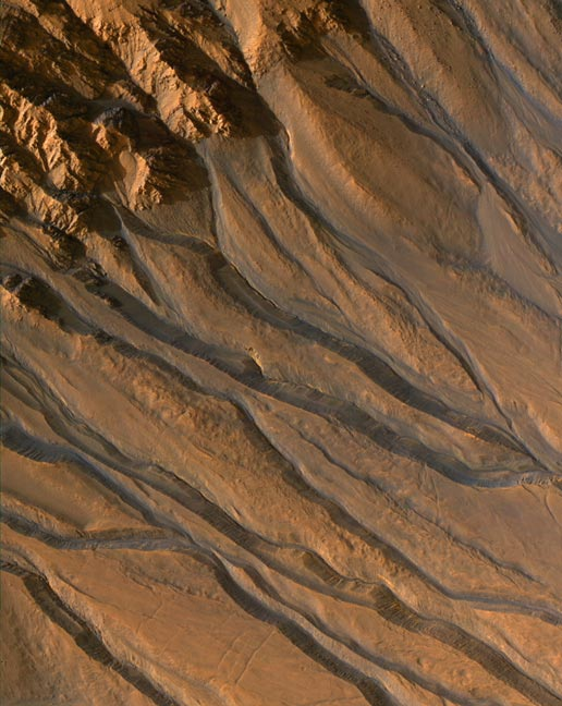 False-color image of gully channels on Mars