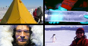 Polar Palooza photo montage