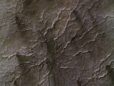 Cryptic Terrain on Mars