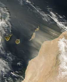 Saharan dust blows off the west coast of Africa and over the Canary Islands in this image captured Nov. 11, 2006 by an instrument aboard NASA's Terra satellite.