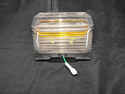 Plant Growth Chamber comprising a small black box with a clear accordion-style plastic lid