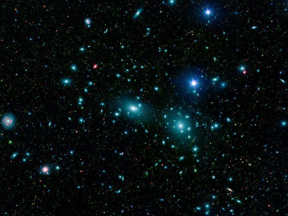 Galaxies de l'amas de la Chevelure de Bérenice photographiées par le télescope Spitzer